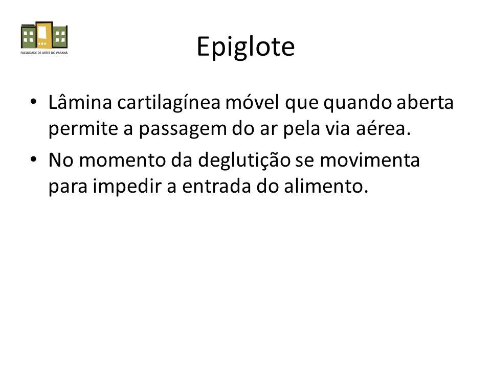 Epiglote Lâmina cartilagínea móvel que quando aberta permite a passagem do ar pela via aérea. No momento da deglutição se movimenta para impedir a ent