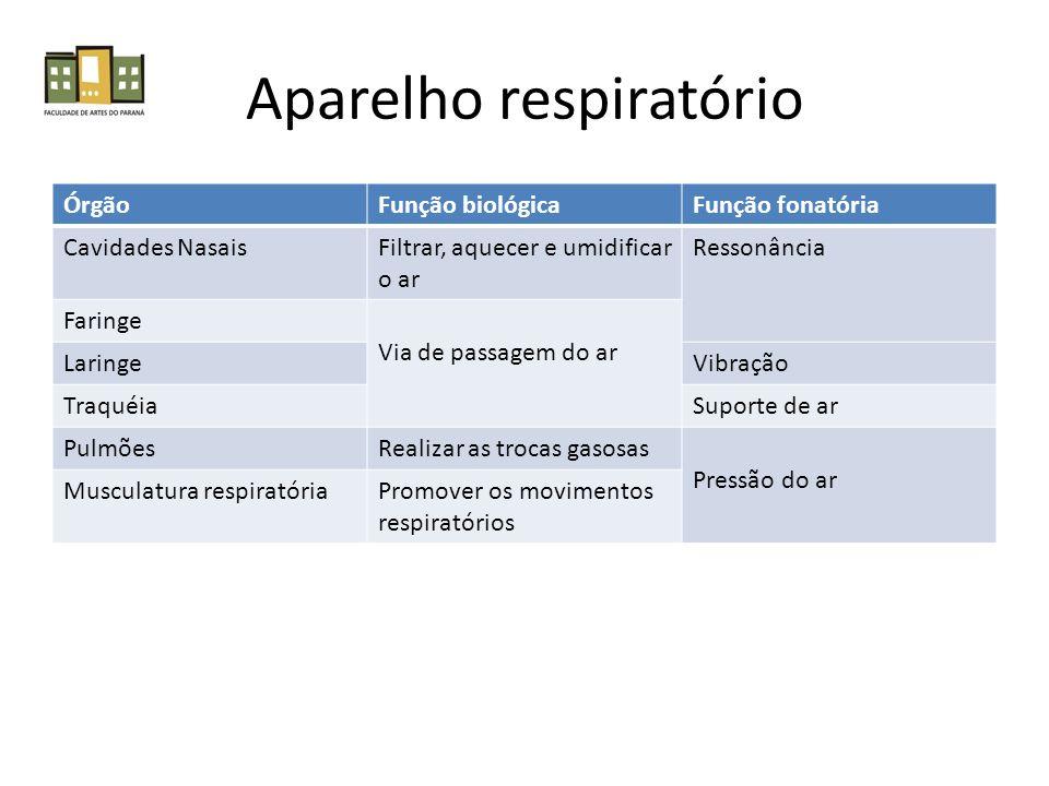 Aparelho respiratório ÓrgãoFunção biológicaFunção fonatória Cavidades NasaisFiltrar, aquecer e umidificar o ar Ressonância Faringe Via de passagem do