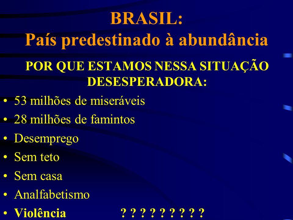 BRASIL: País predestinado à abundância POR QUE ESTAMOS NESSA SITUAÇÃO DESESPERADORA: 53 milhões de miseráveis 28 milhões de famintos Desemprego Sem te