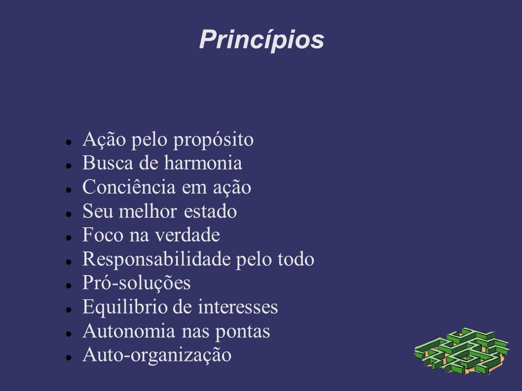 Princípios Ação pelo propósito Busca de harmonia Conciência em ação Seu melhor estado Foco na verdade Responsabilidade pelo todo Pró-soluções Equilibrio de interesses Autonomia nas pontas Auto-organização