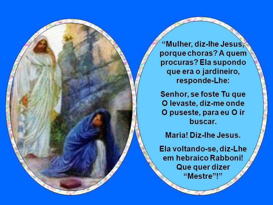 """Maria chorava por que não encontrou o seu Senhor. E os anjos lhe disseram: Porque choras? """"Porque levaram o meu Senhor lhes diz ela, e não sei onde O"""