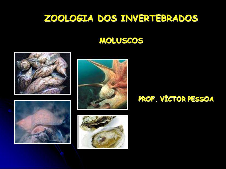 ZOOLOGIA DOS INVERTEBRADOS MOLUSCOS PROF. VÍCTOR PESSOA