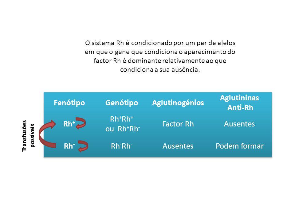 O sistema Rh é condicionado por um par de alelos em que o gene que condiciona o aparecimento do factor Rh é dominante relativamente ao que condiciona a sua ausência.