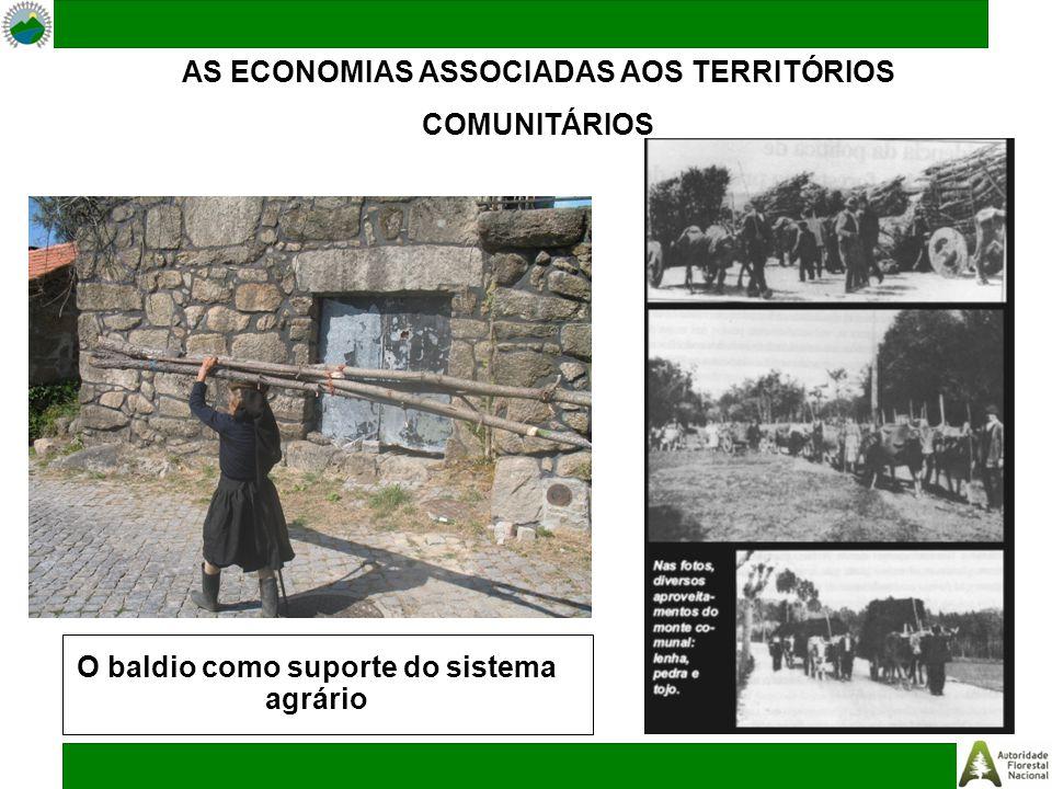 AS ECONOMIAS ASSOCIADAS AOS TERRITÓRIOS COMUNITÁRIOS O baldio como suporte do sistema agrário