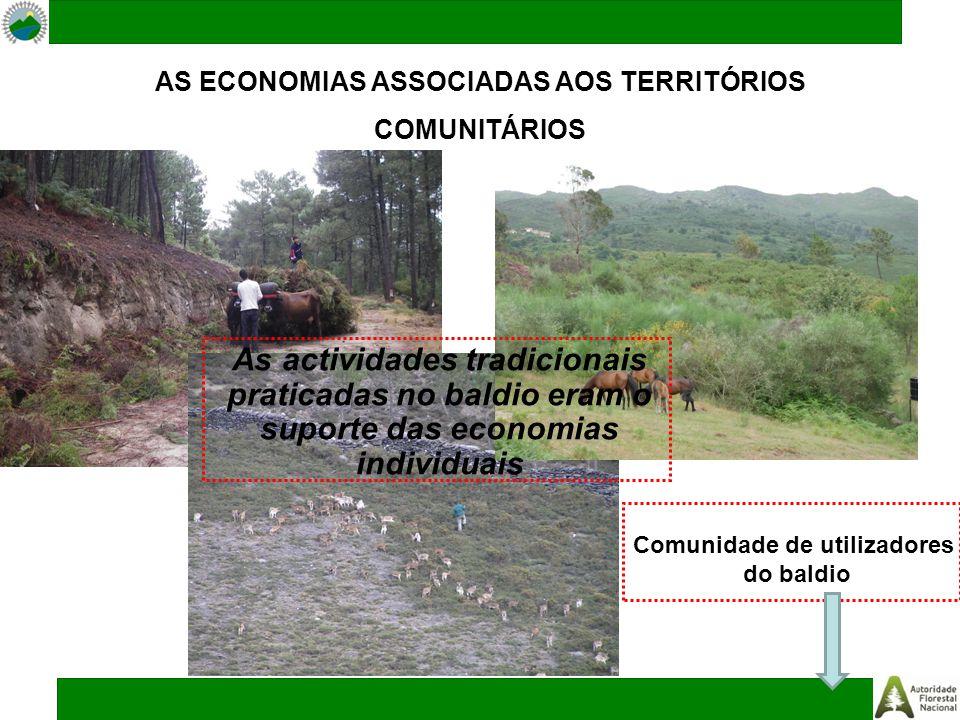 AS ECONOMIAS ASSOCIADAS AOS TERRITÓRIOS COMUNITÁRIOS As actividades tradicionais praticadas no baldio eram o suporte das economias individuais Comunidade de utilizadores do baldio