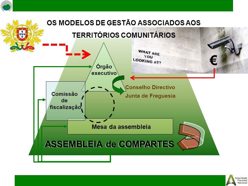 ASSEMBLEIA de COMPARTES Mesa da assembleia Órgão executivo Conselho Directivo Junta de Freguesia Comissão de fiscalização OS MODELOS DE GESTÃO ASSOCIA