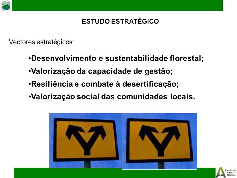 ESTUDO ESTRATÉGICO Vectores estratégicos: Desenvolvimento e sustentabilidade florestal; Valorização da capacidade de gestão; Resiliência e combate à desertificação; Valorização social das comunidades locais.