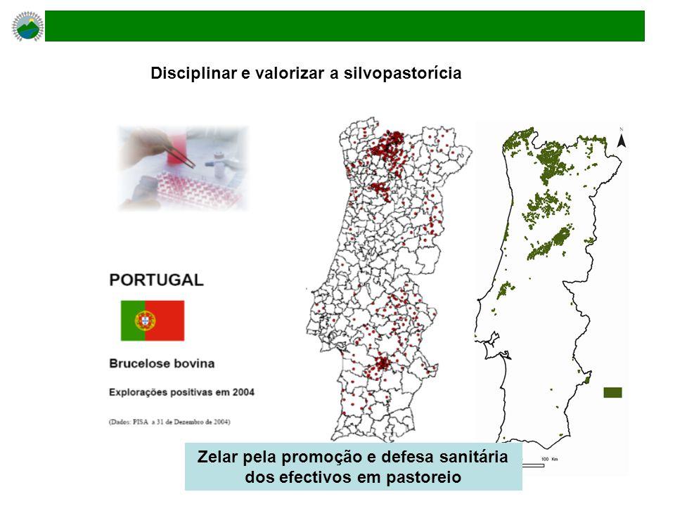 Zelar pela promoção e defesa sanitária dos efectivos em pastoreio Disciplinar e valorizar a silvopastorícia