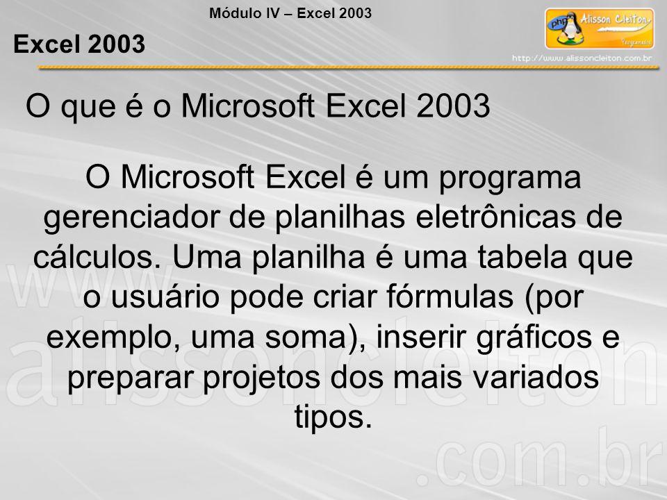 O que é o Microsoft Excel 2003 O Microsoft Excel é um programa gerenciador de planilhas eletrônicas de cálculos. Uma planilha é uma tabela que o usuár