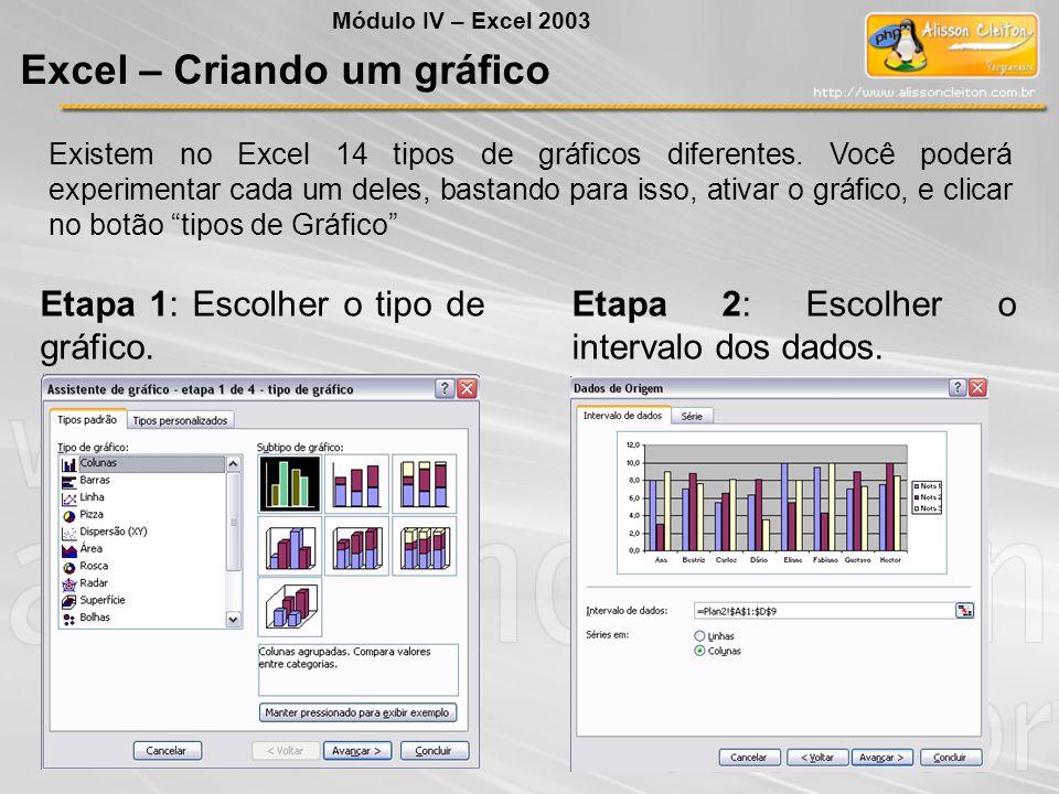 """Existem no Excel 14 tipos de gráficos diferentes. Você poderá experimentar cada um deles, bastando para isso, ativar o gráfico, e clicar no botão """"tip"""