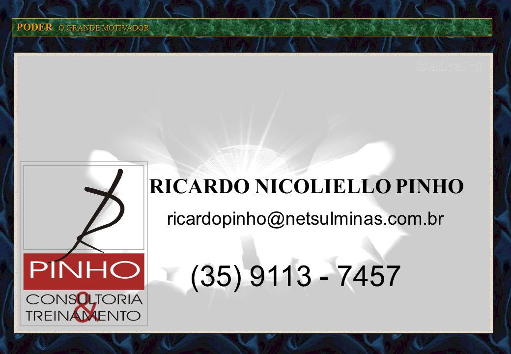PODER O GRANDE MOTIVADOR ricardopinho@netsulminas.com.br (35) 9113 - 7457 RICARDO NICOLIELLO PINHO