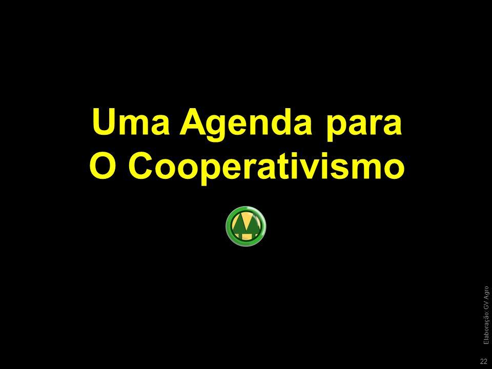 Uma Agenda para O Cooperativismo 22 Elaboração: GV Agro