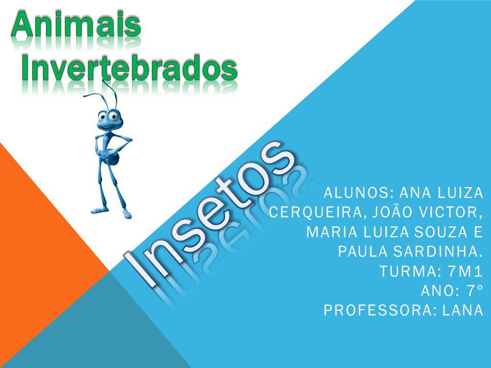 ALUNOS: ANA LUIZA CERQUEIRA, JOÃO VICTOR, MARIA LUIZA SOUZA E PAULA SARDINHA. TURMA: 7M1 ANO: 7º PROFESSORA: LANA