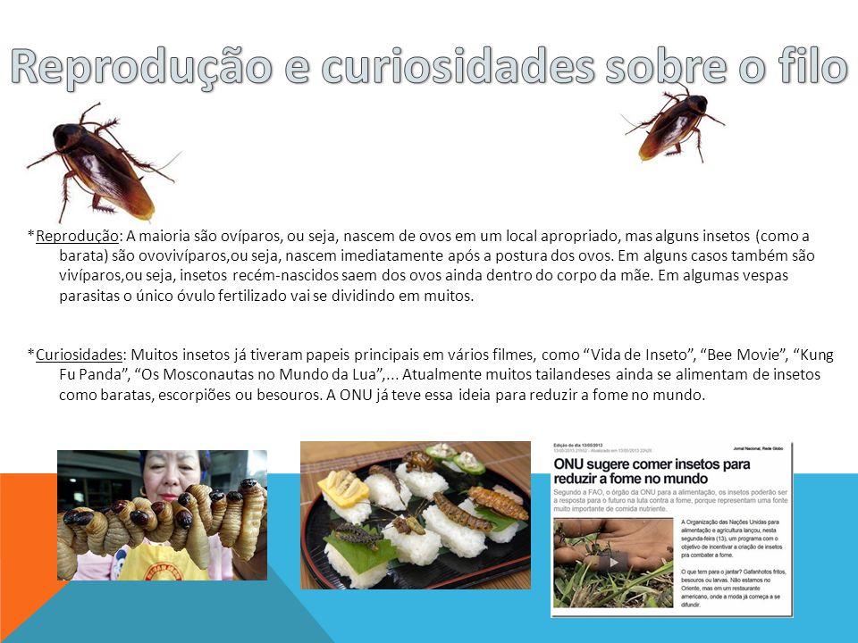 *Reprodução: A maioria são ovíparos, ou seja, nascem de ovos em um local apropriado, mas alguns insetos (como a barata) são ovovivíparos,ou seja, nasc