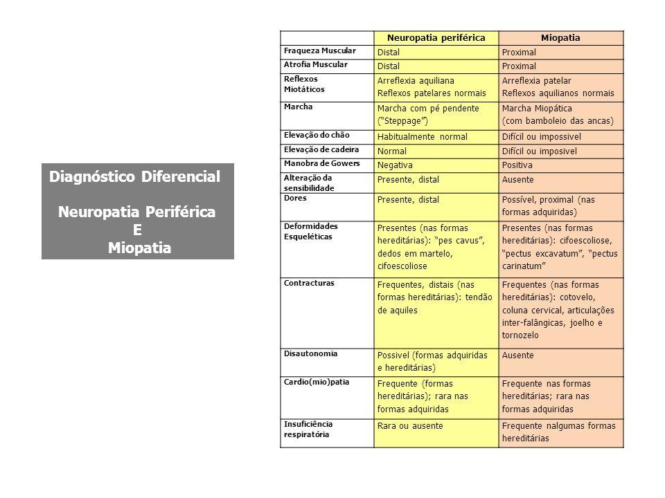 Neuropatia periféricaMiopatia Fraqueza Muscular DistalProximal Atrofia Muscular DistalProximal Reflexos Miotáticos Arreflexia aquiliana Reflexos patelares normais Arreflexia patelar Reflexos aquilianos normais Marcha Marcha com pé pendente ( Steppage ) Marcha Miopática (com bamboleio das ancas) Elevação do chão Habitualmente normalDifícil ou impossivel Elevação de cadeira NormalDifícil ou imposivel Manobra de Gowers NegativaPositiva Alteração da sensibilidade Presente, distalAusente Dores Presente, distal Possível, proximal (nas formas adquiridas) Deformidades Esqueléticas Presentes (nas formas hereditárias): pes cavus , dedos em martelo, cifoescoliose Presentes (nas formas hereditárias): cifoescoliose, pectus excavatum , pectus carinatum Contracturas Frequentes, distais (nas formas hereditárias): tendão de aquiles Frequentes (nas formas hereditárias): cotovelo, coluna cervical, articulações inter-falângicas, joelho e tornozelo Disautonomia Possivel (formas adquiridas e hereditárias) Ausente Cardio(mio)patia Frequente (formas hereditárias); rara nas formas adquiridas Frequente nas formas hereditárias; rara nas formas adquiridas Insuficiência respiratória Rara ou ausenteFrequente nalgumas formas hereditárias Diagnóstico Diferencial Neuropatia Periférica E Miopatia