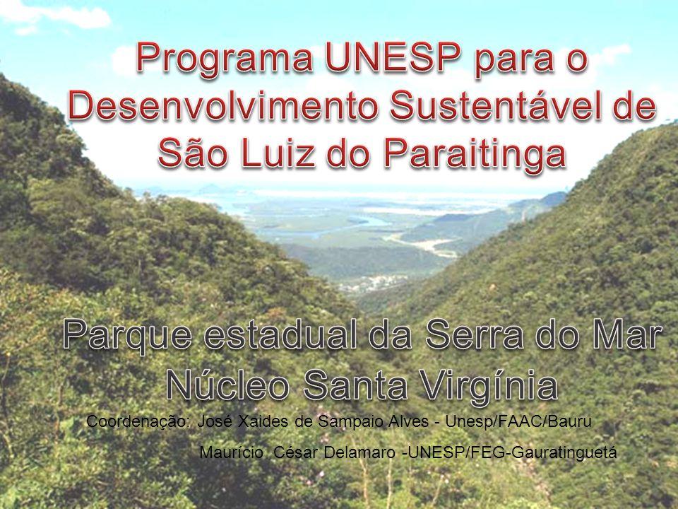 Coordenação: José Xaides de Sampaio Alves - Unesp/FAAC/Bauru Maurício César Delamaro -UNESP/FEG-Gauratinguetá