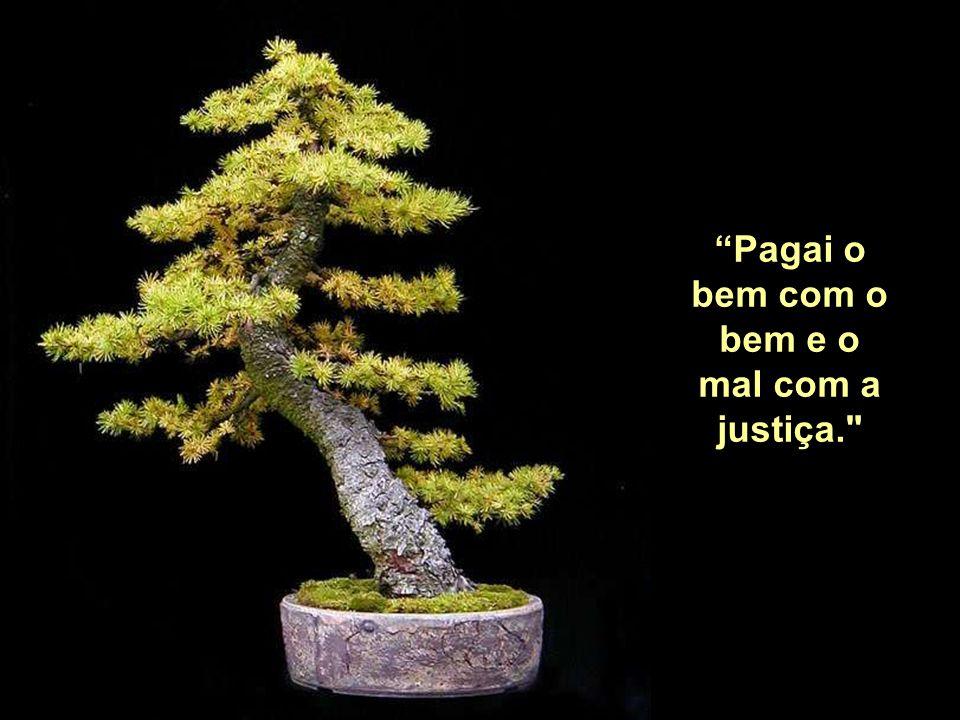 """""""Onde há justiça não há pobreza."""""""