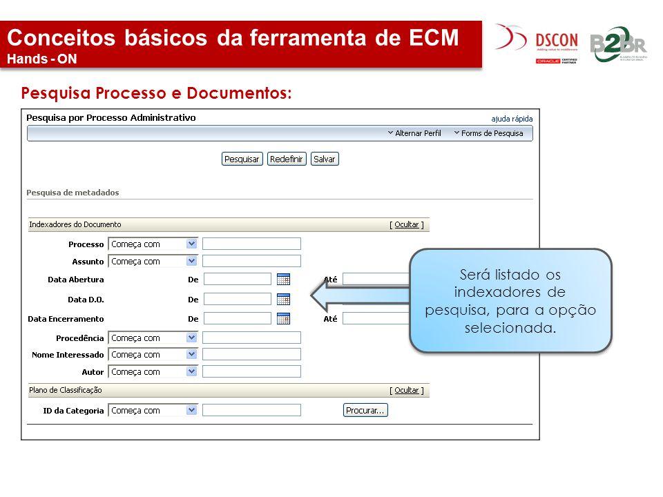 Conceitos básicos da ferramenta de ECM Hands - ON Pesquisa Processo e Documentos: Será listado os indexadores de pesquisa, para a opção selecionada.