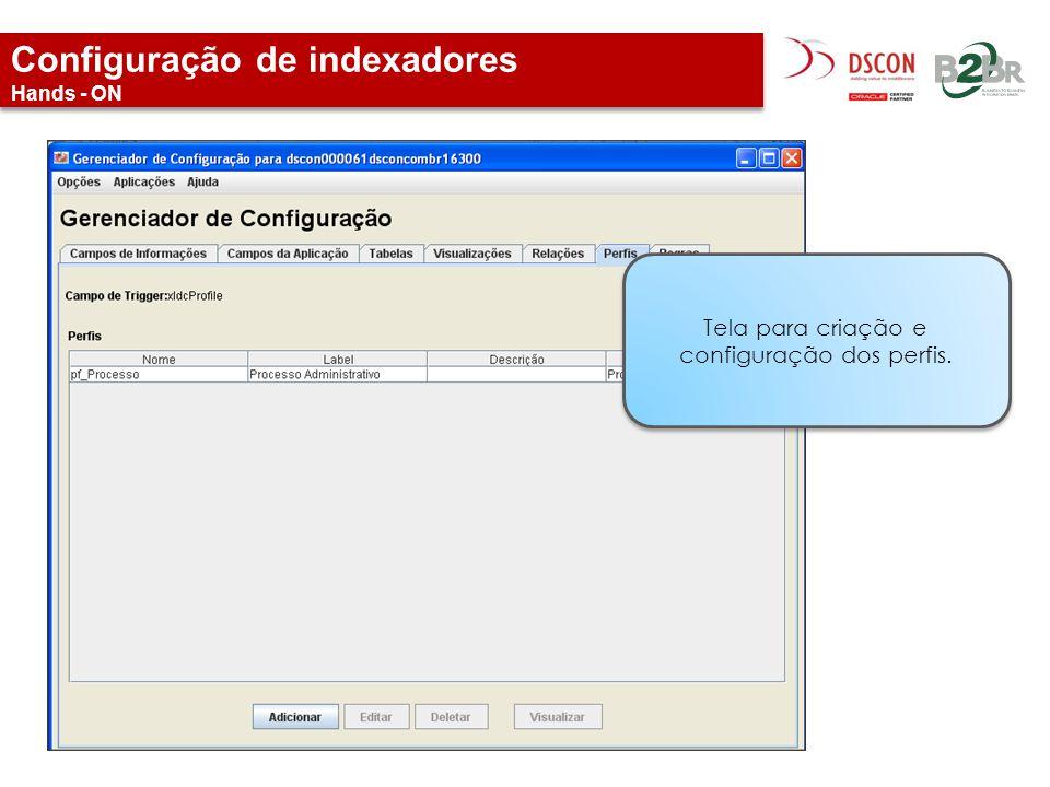 Configuração de indexadores Hands - ON Tela para criação e configuração dos perfis.