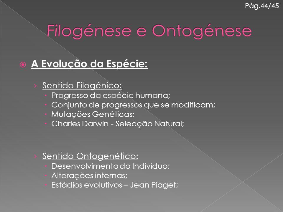 A Evolução da Espécie: › Sentido Filogénico:  Progresso da espécie humana;  Conjunto de progressos que se modificam;  Mutações Genéticas;  Charl