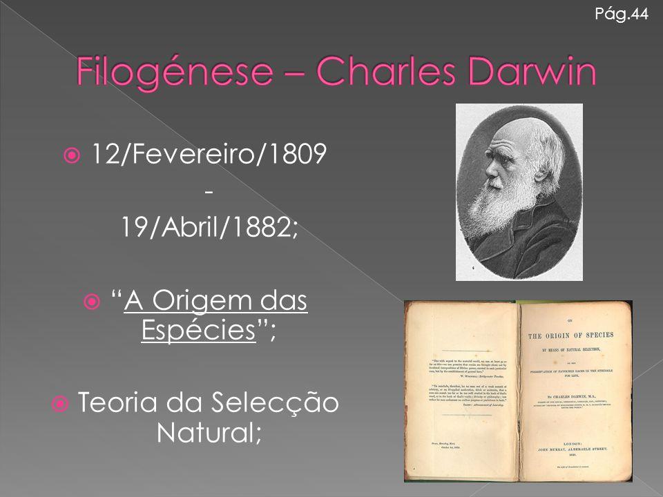 """ 12/Fevereiro/1809 - 19/Abril/1882;  """"A Origem das Espécies"""";  Teoria da Selecção Natural; Pág.44"""