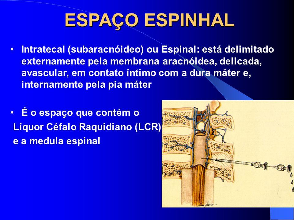 Magda A S Silva ESPAÇO ESPINHAL Intratecal (subaracnóideo) ou Espinal: está delimitado externamente pela membrana aracnóidea, delicada, avascular, em