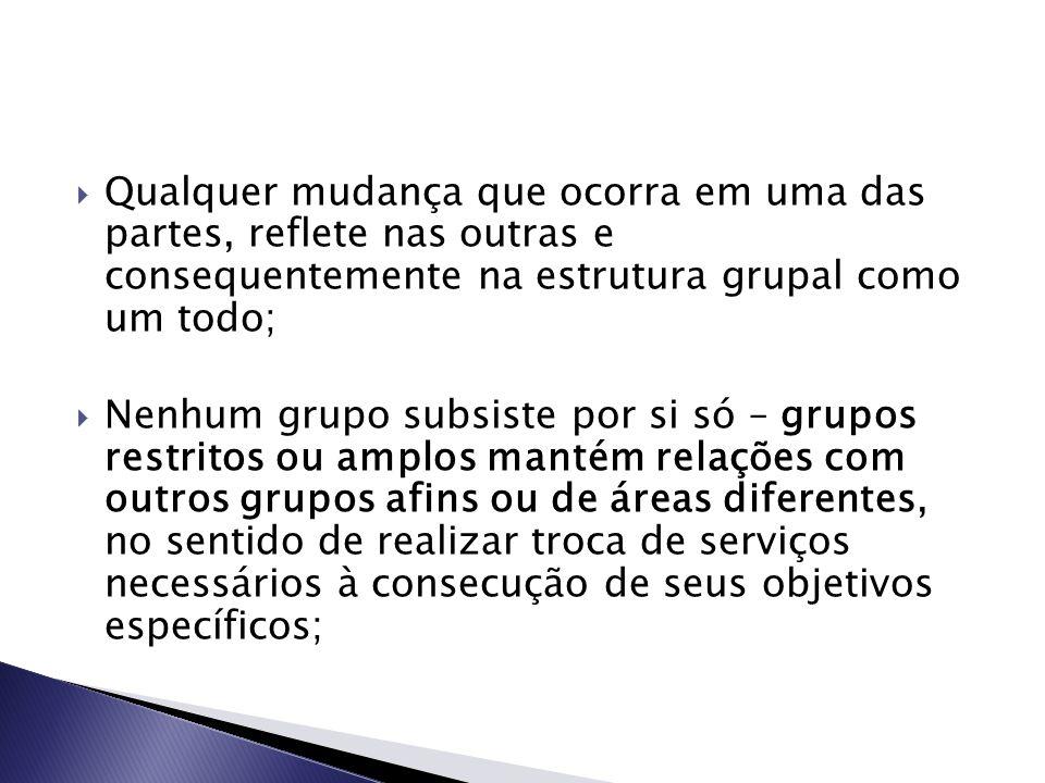  Qualquer mudança que ocorra em uma das partes, reflete nas outras e consequentemente na estrutura grupal como um todo;  Nenhum grupo subsiste por s