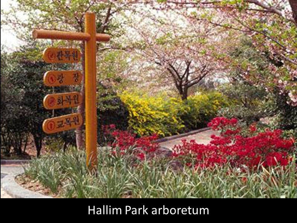 Das principais atrações da ilha, o Hallim Park é uma das mais famosas e visitadas atrações turísticas da Ilha