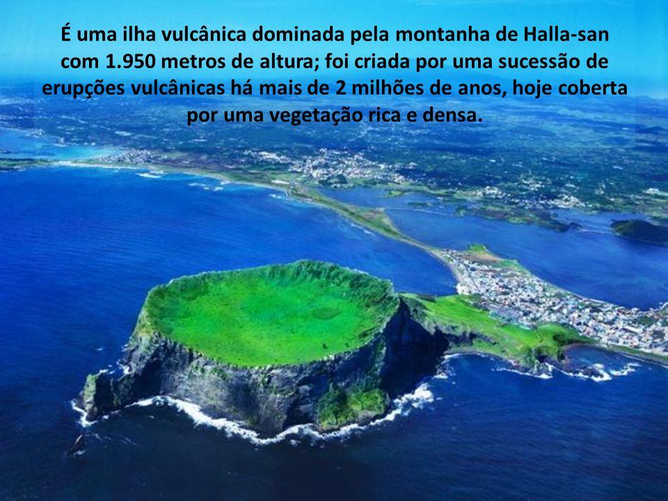 É uma ilha vulcânica dominada pela montanha de Halla-san com 1.950 metros de altura; foi criada por uma sucessão de erupções vulcânicas há mais de 2 milhões de anos, hoje coberta por uma vegetação rica e densa.