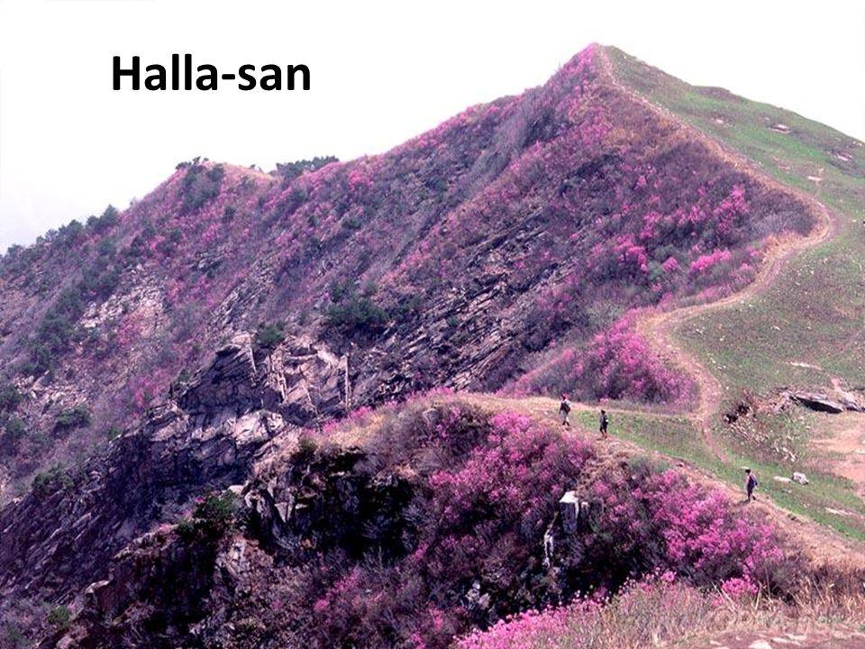 O Halla-san está adormecido há mais de 800 anos, o que deixou à vista um longo canal semelhante a uma caverna. Juntamente de suas rochas foram formado