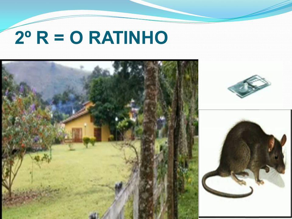 2º R = O RATINHO