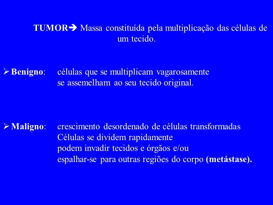 TUMOR  Massa constituída pela multiplicação das células de um tecido.