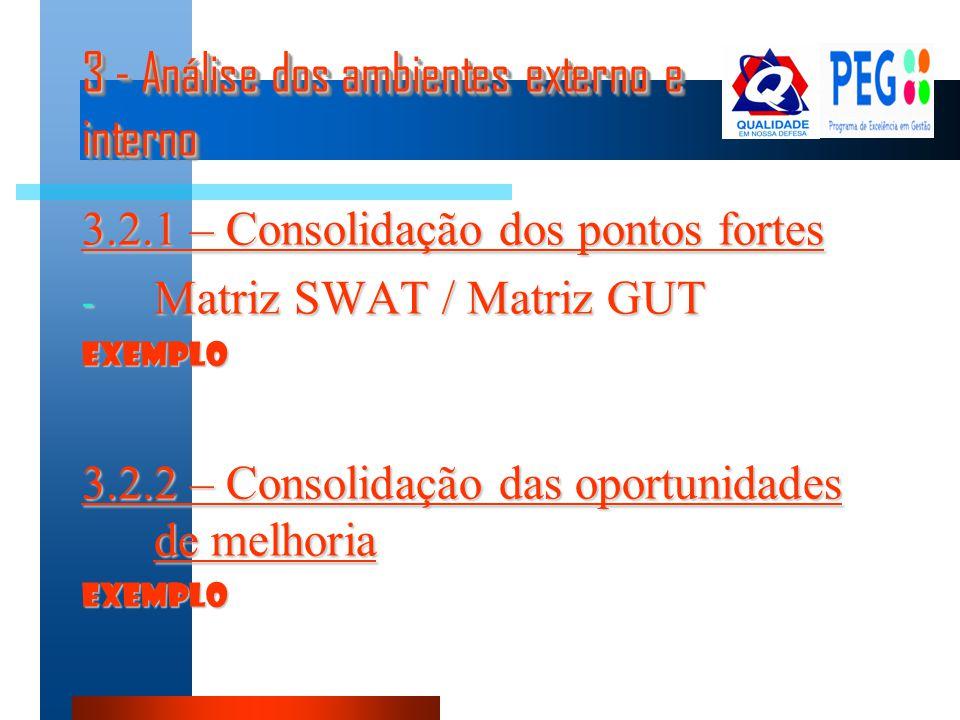 3 - Análise dos ambientes externo e interno 3.2.1 – Consolidação dos pontos fortes - Matriz SWAT / Matriz GUT EXEMPLO 3.2.2 – Consolidação das oportun