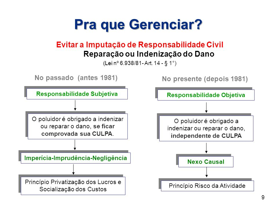 No passado (antes 1981) Princípio Privatização dos Lucros e Socialização dos Custos Princípio Risco da Atividade O poluidor é obrigado a indenizar ou