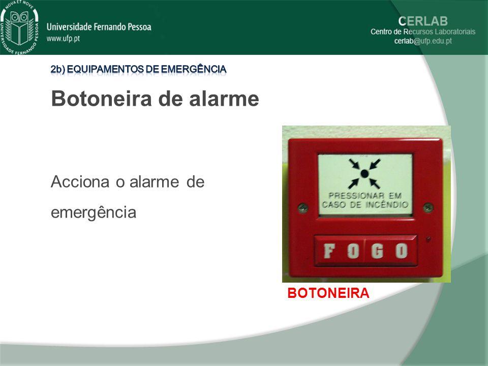 BOTONEIRA