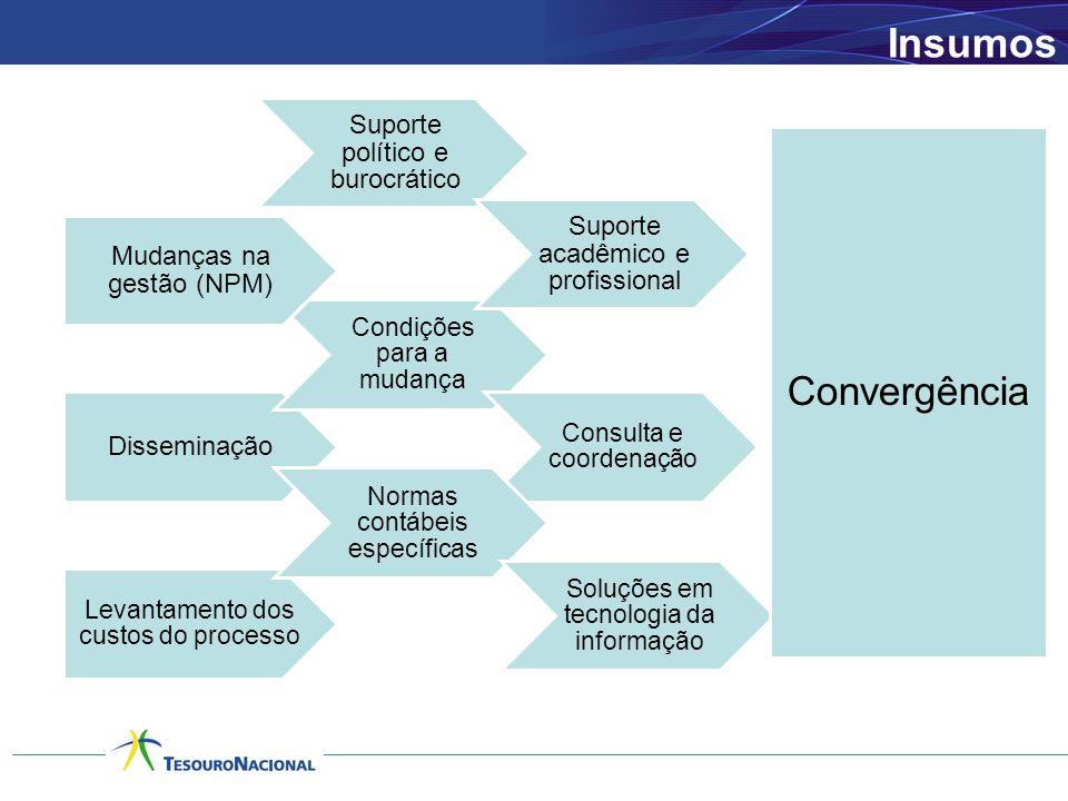 Insumos Disseminação Condições para a mudança Consulta e coordenação Mudanças na gestão (NPM) Suporte político e burocrático Suporte acadêmico e profissional Levantamento dos custos do processo Normas contábeis específicas Soluções em tecnologia da informação Convergência