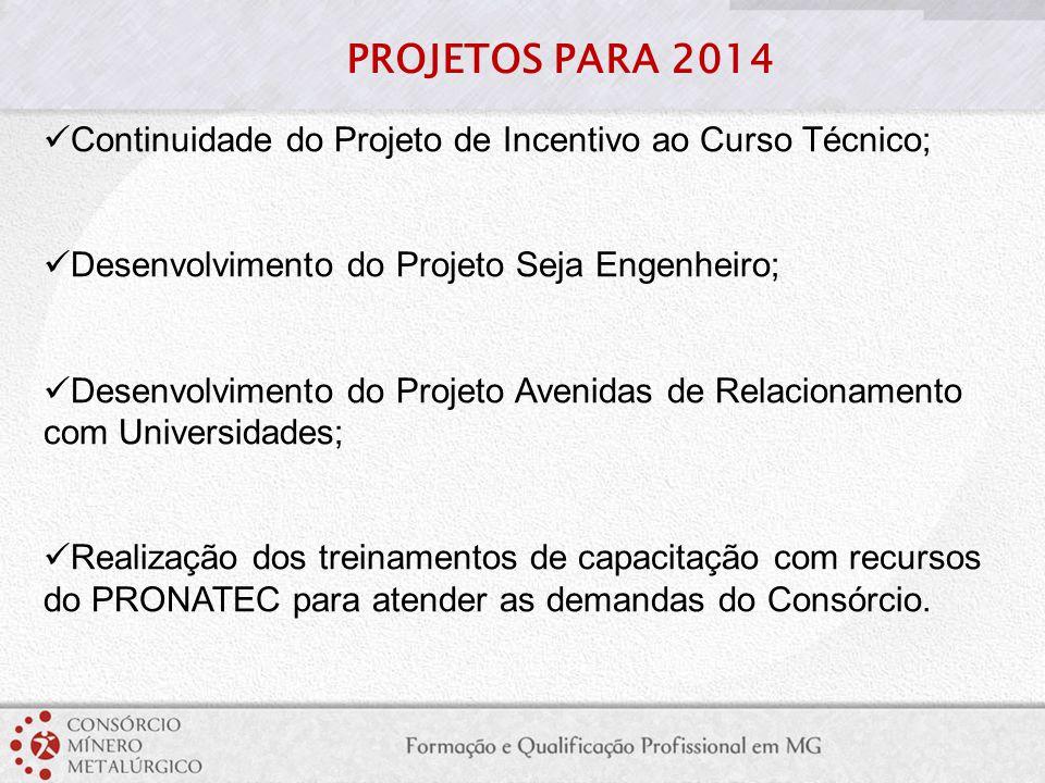 Continuidade do Projeto de Incentivo ao Curso Técnico; Desenvolvimento do Projeto Seja Engenheiro; Desenvolvimento do Projeto Avenidas de Relacionamen