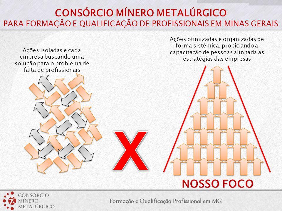 Ações isoladas e cada empresa buscando uma solução para o problema de falta de profissionais NOSSO FOCO Ações otimizadas e organizadas de forma sistêm