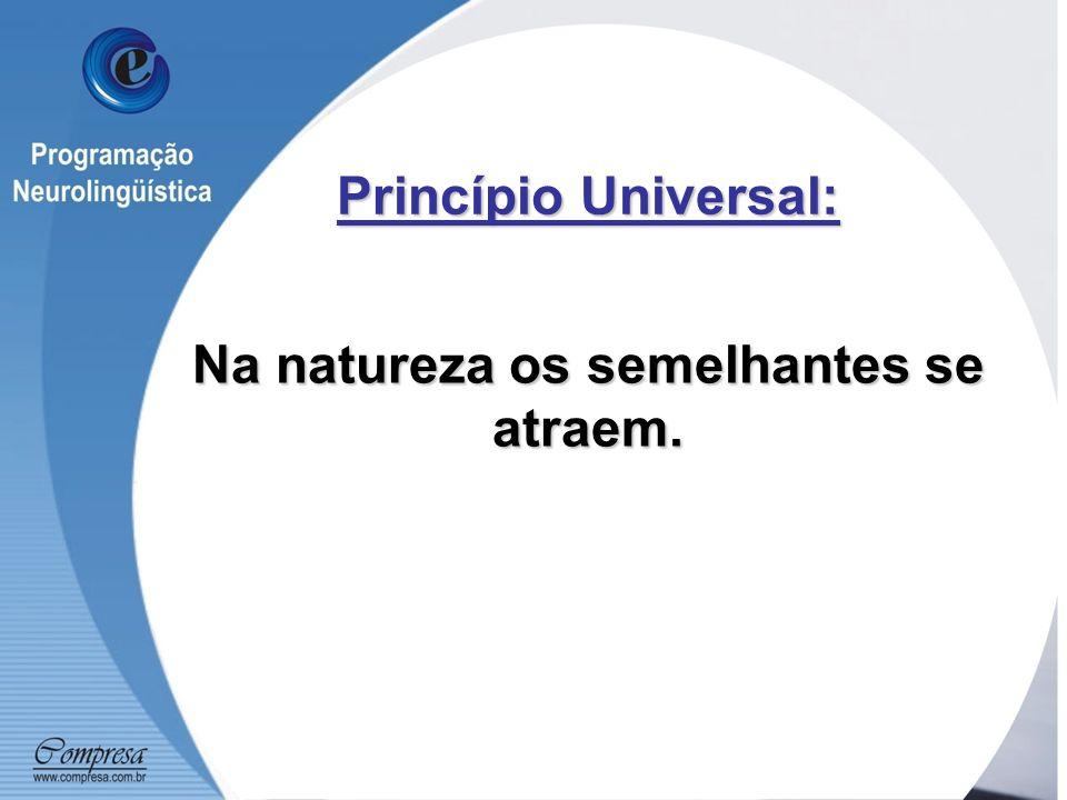Princípio Universal: Na natureza os semelhantes se atraem.