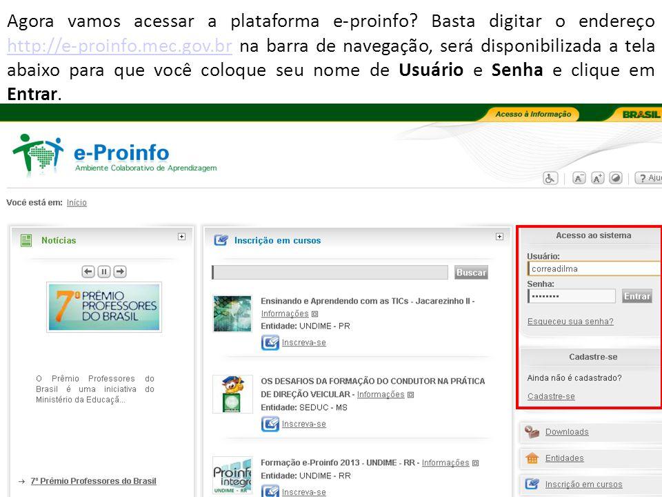 Agora vamos acessar a plataforma e-proinfo.