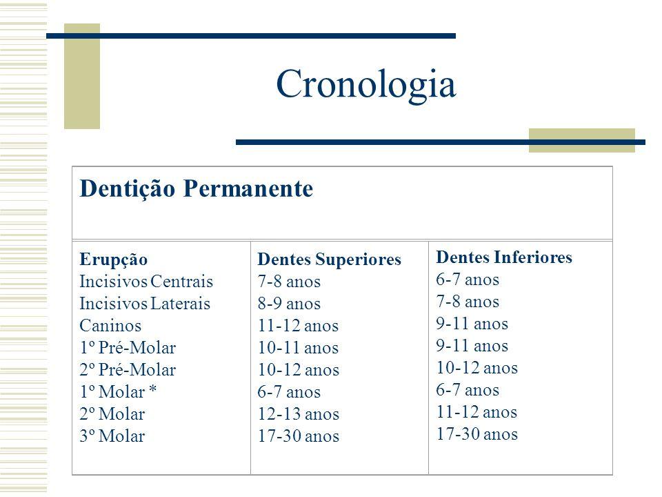 Cronologia Dentição Permanente Erupção Incisivos Centrais Incisivos Laterais Caninos 1º Pré-Molar 2º Pré-Molar 1º Molar * 2º Molar 3º Molar Dentes Sup