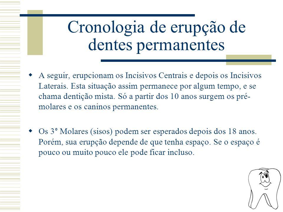 Cronologia de erupção de dentes permanentes  A seguir, erupcionam os Incisivos Centrais e depois os Incisivos Laterais. Esta situação assim permanece