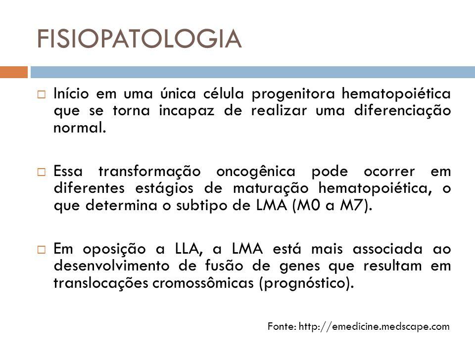 FISIOPATOLOGIA  Início em uma única célula progenitora hematopoiética que se torna incapaz de realizar uma diferenciação normal.  Essa transformação