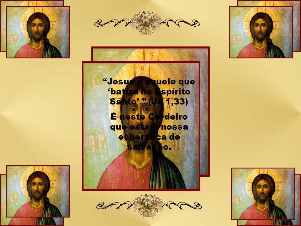 """""""João Batista, ao apontar Jesus como o Cordeiro de Deus que tira o pecado do mundo, define-o como o único capaz de ser o sinal eficaz de vida plena e,"""