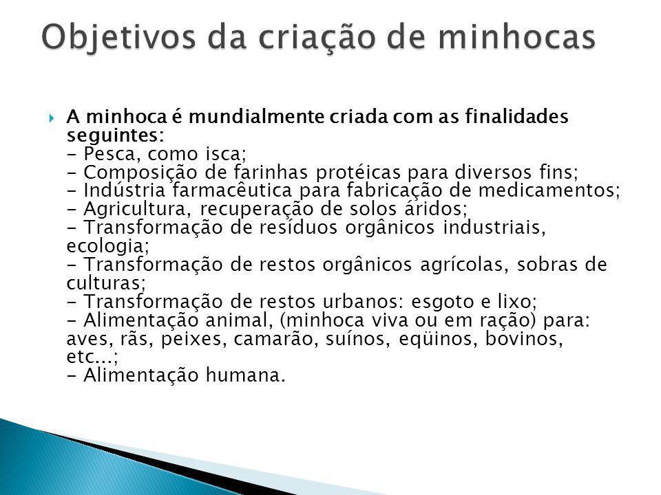  A minhoca é mundialmente criada com as finalidades seguintes: - Pesca, como isca; - Composição de farinhas protéicas para diversos fins; - Indústria