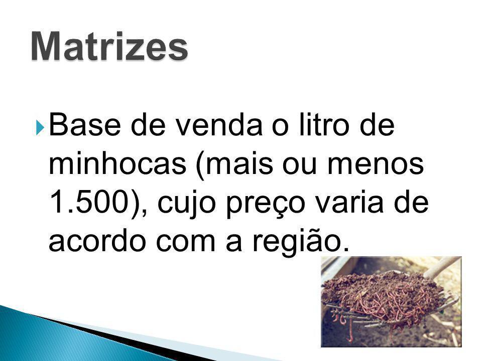  Base de venda o litro de minhocas (mais ou menos 1.500), cujo preço varia de acordo com a região.