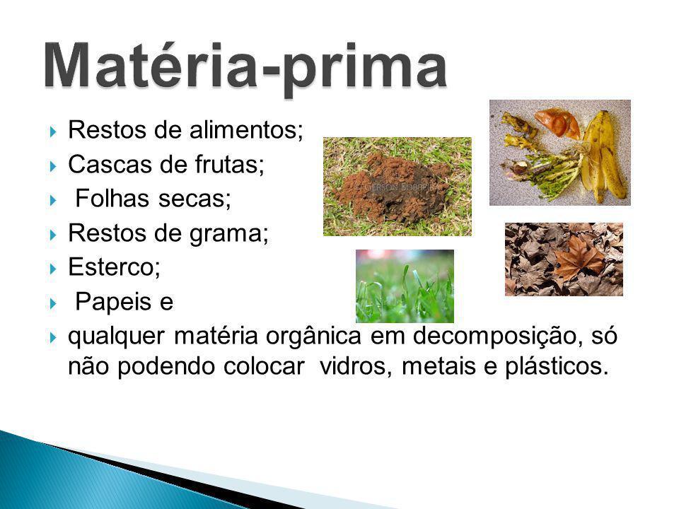  Restos de alimentos;  Cascas de frutas;  Folhas secas;  Restos de grama;  Esterco;  Papeis e  qualquer matéria orgânica em decomposição, só nã