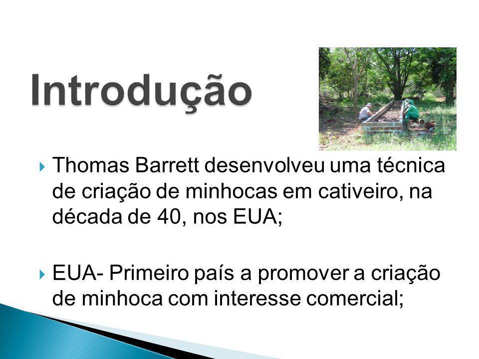  Thomas Barrett desenvolveu uma técnica de criação de minhocas em cativeiro, na década de 40, nos EUA;  EUA- Primeiro país a promover a criação de m