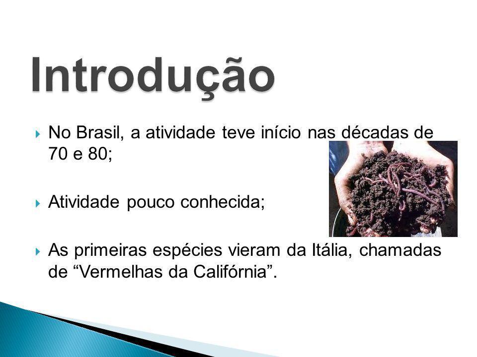 """ No Brasil, a atividade teve início nas décadas de 70 e 80;  Atividade pouco conhecida;  As primeiras espécies vieram da Itália, chamadas de """"Verme"""