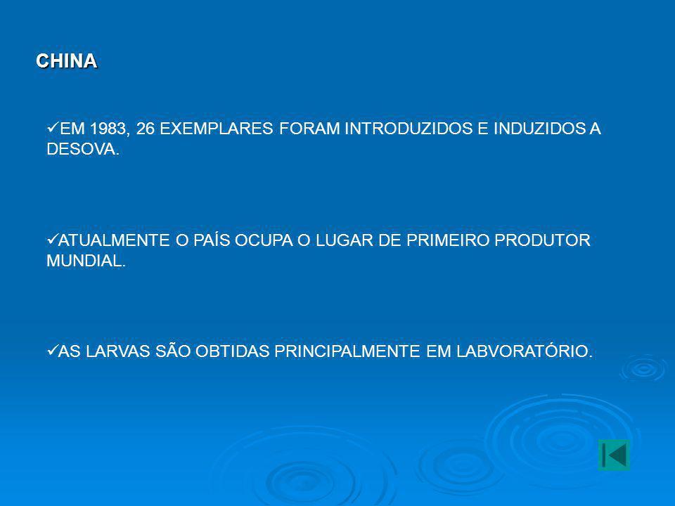 FRANÇA UM DOS PRINCIPAIS PRODUTORES DA EUROPA, A PRINCIPAL ESPÉCIE CULTIVADA É A VIEIRA.